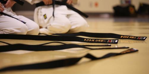 new-belts